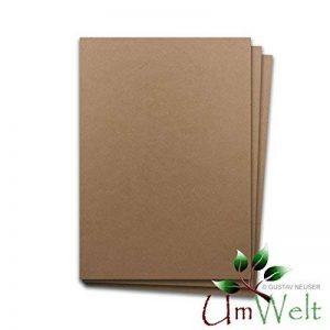 Papier naturel - papier écologique BROWN | DIN A4 | 100 feuilles | - 120 g / m² - carton naturel - carton écologique - papier kraft | 210 x 297 mm | Idéal pour l'artisanat, cartes, invitations - envir de la marque Neuser image 0 produit