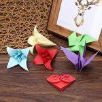 papier origami bicolore TOP 14 image 4 produit