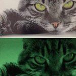 papier photo a4 premium inkjet TOP 13 image 3 produit