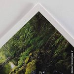 papier photo rag TOP 1 image 3 produit