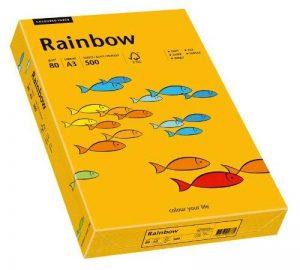 Papyrus 88042412 / Rainbow Papier multifonctions Format A3 80 g/m² Orange clair 500 feuilles (Import Allemagne) de la marque Papyrus image 0 produit