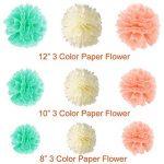 Paxcoo 40pcs Mint Peach Tissue Pom Poms Latex Balloons et Paper Garland pour les décorations pour fêtes de naissance de la marque PAXCOO image 1 produit