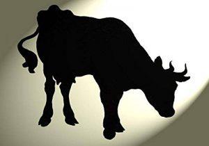 pochoir vache TOP 4 image 0 produit