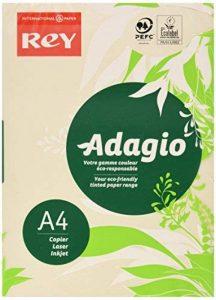 Rey Adagio Ramette de 250 feuilles papier couleur pour imprimante laser/jet d'encre/copieur 160g Format A4 ivoire de la marque REY image 0 produit