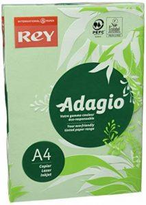 Rey Adagio Ramette de 250 feuilles papier couleur pour imprimante laser/jet d'encre/copieur 160g Format A4 Vert vif de la marque REY image 0 produit