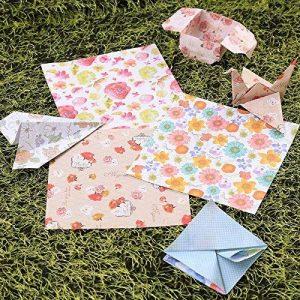 Rosepoem 60pcs Beauté Floral Place Origami japonais pliant Rêves chanceux Papier 6 couleurs double face 15 15cm Craft grue Chiyogami de la marque Kicode image 0 produit