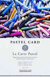 Sennelier Pastel sec Card (fine Papier de verre grain) Pad 24x16cm 12 feuilles of 6 assorted colours 360gs de la marque Sennelier image 0 produit