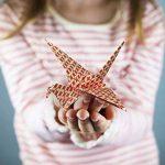 Set papier origami - 120 feuilles - Papier traditionnel japonais à plier comprenant de motifs floraux, animaux, aztèques, géométriques - Créez des fleurs, une grue, une chouette, un dragon, des animaux - Papiers origami pour enfants & adultes de la marque image 2 produit