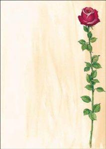 Sigel DP695 Papier à lettres, 21 x 29,7 cm, 90g/m², une rose rouge, rose et vert, 25 feuilles de la marque Sigel image 0 produit