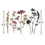 Sizzix 661190 Thinlits Die Set Matrice Fleur Sauvage par Tim Holtz Acier Carbone Multicolore 19 x 14,5 x 0,5 cm 7 Pièces de la marque Sizzix image 4 produit