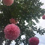 SUNBEAUTY Pompon Papier de Soie Rose Fuchsia pour Mariage Anniversaire Décoration Fete Lot de 27 de la marque SUNBEAUTY image 3 produit