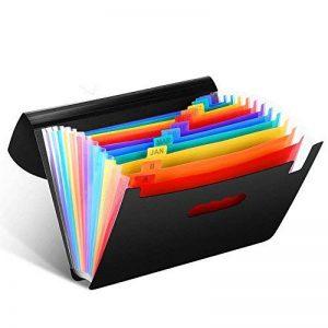 Trieur Extensible A4 12 Poches Divisibles Soufflets Porte-documents Office Organizer pour la maison/le bureau, reliure à anneaux, à utiliser comme boîte d'archivage/documents de la marque Veyette image 0 produit