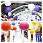 TSSS Lot de 8 lanternes chinoises pliantes en papier pour mariage ou décoration pour événement Floral 30 cm de la marque TSSS image 1 produit