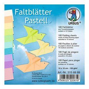 URSUS 3156199pliable Feuilles Couleurs pastel feuilles en 10couleurs assorties de la marque Ursus image 0 produit
