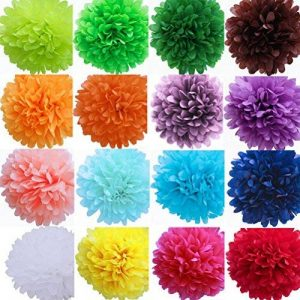 WINOMO 25CM Multicolores Pompon Boule de Fleur en Papier de Soie pour la Décoration de Mariage Fête Baby Shower 10pcs de la marque WINOMO image 0 produit